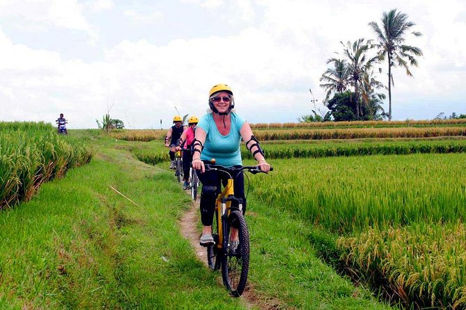 Half-Day Ubud Rice Field and Village Cycling Tour