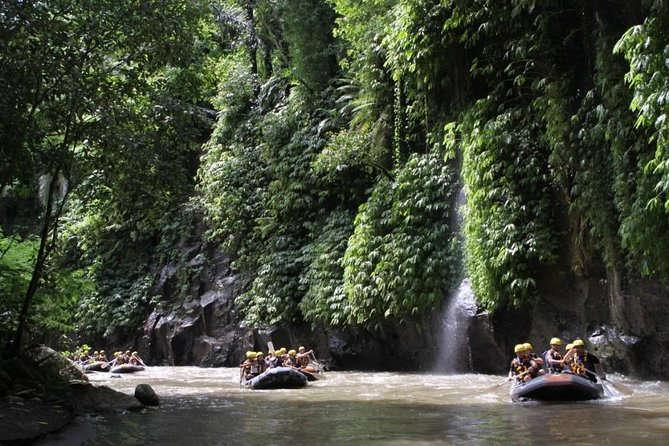 Full-Day Ayung River White Water Rafting and Ubud Tour