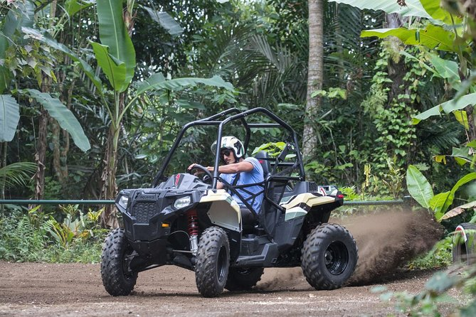 Mountain Cyling and Jungle Buggies in Bali