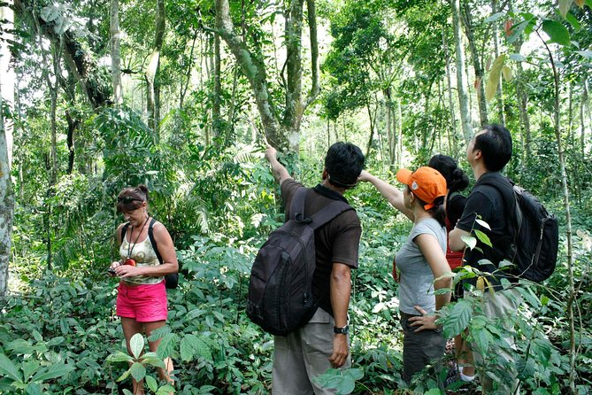 Full-Day Trekking Tour with Taro and Tegalalang from Ubud photo 2