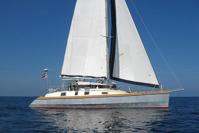 Catamaran Mozart Cruises
