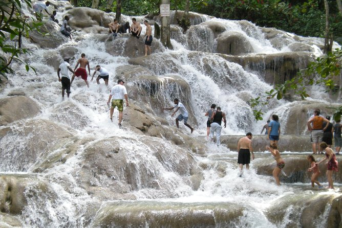 Dunn's River Falls and Luminous Lagoon Tour from Montego Bay