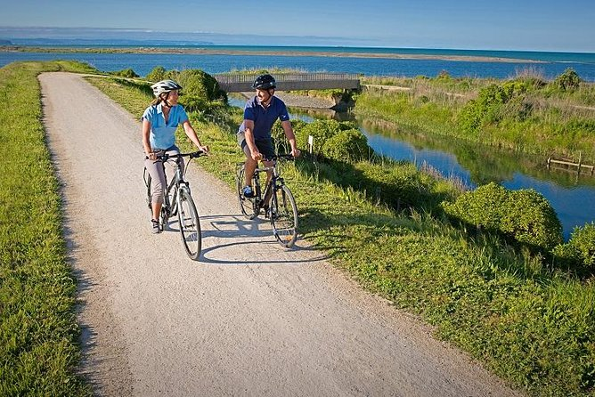 Award-winning Hawke's Bay Wineries on a bike - Self-Guided