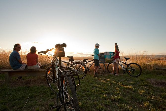 Sunset Cycle Tour of Ahuriri Estuary including Winery - Guided