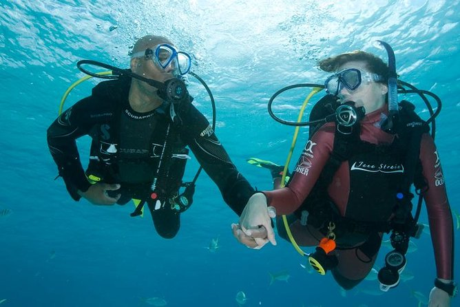 2 Dive Package for PADI Qualified Divers in Gran Canaria