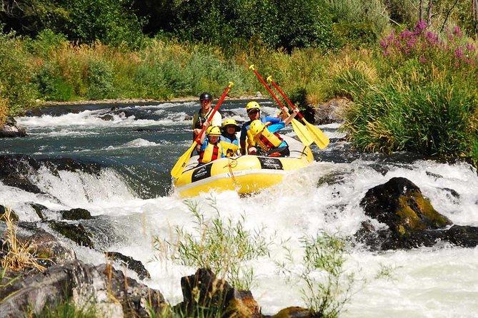 Rogue Valley Rapid Run
