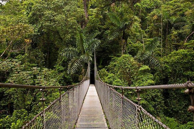 3-in-1 Arenal Combo Tour: Hanging Bridges, La Fortuna Waterfall & Volcano Hike