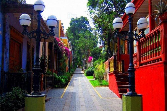 Private Walking Tour in Miraflores & Barranco