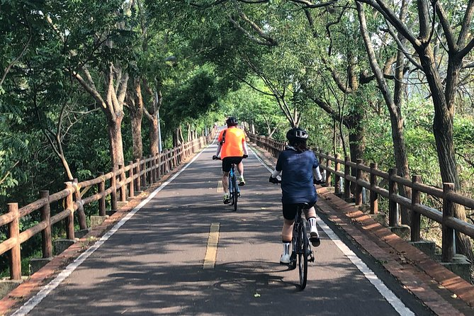 Leisure Cycling Experience & Gaomei Wetlands Sunset & Fengjia Night Market