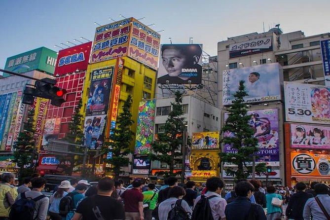 Akihabara Guided Walking Tour