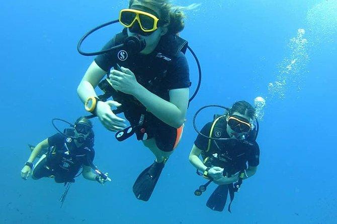 Dive Trip around Ko Kut Including 2 Dives ( Start at Ko Kut)