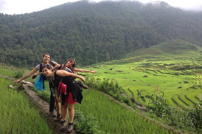 Active and sporty Trek- Authentic Rice Terrace Fields
