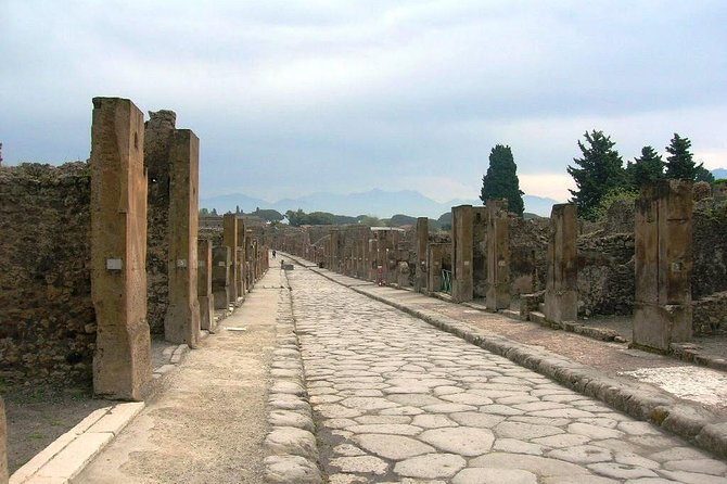 Pompei Archeological site and Wine tasting Experience