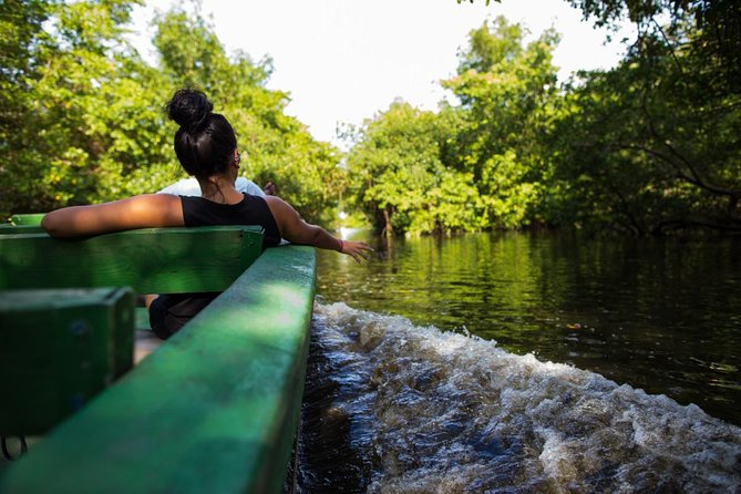 Sunset Boat Tour into the Caroni Wetlands from Port of Spain