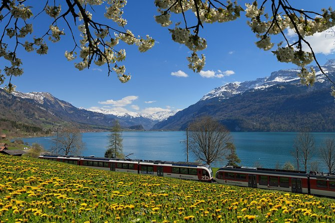 8-Day Grand Train Tour of Switzerland from Zurich