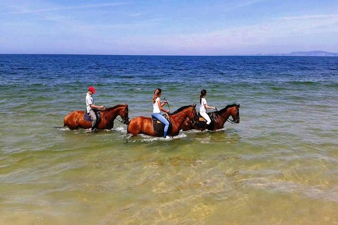 Horse Riding Tour on the Beach Lisbon region photo 1