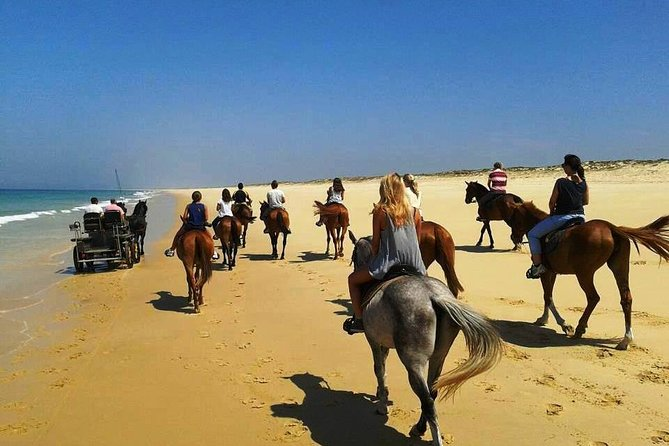 Horse Riding Tour on the Beach Lisbon region photo 11