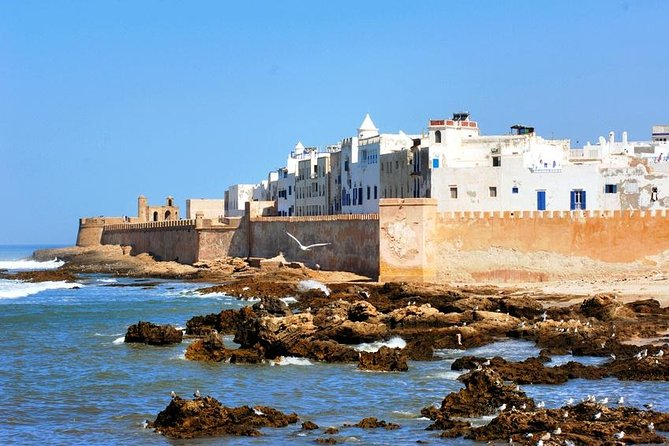 Private Atlantic Coast Excursion to Essaouira from Marrakech