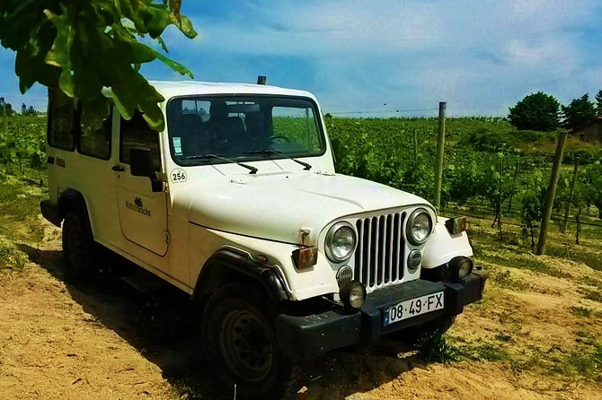4x4 Wine Tour in the Portuguese Vinho Verde Region including Regional Picnic photo 6