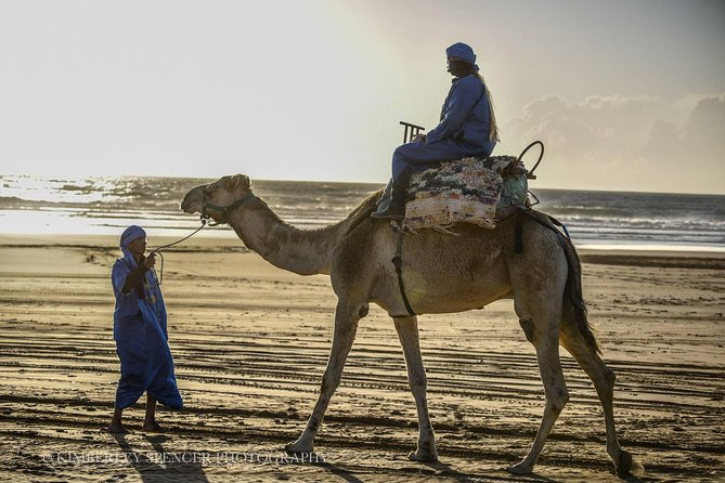 Day Camel Ride with Picnic on Essaouira's beach