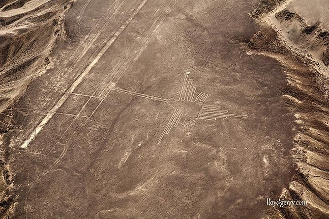 Nazca Lines and Huacachina Oasis from San Martin Port