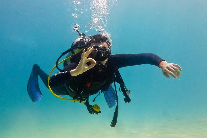 Open Water Diver photo 1