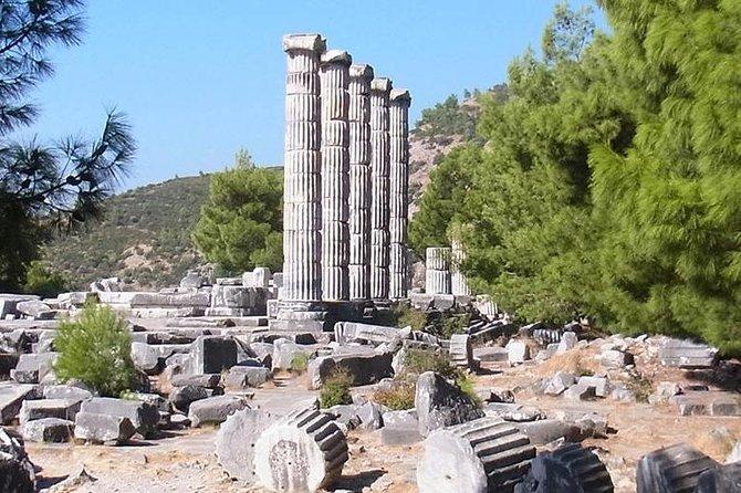 Priene Miletus Didyma Private Tour