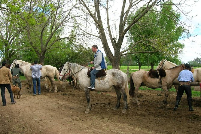 Gaucho Day Tour Ranch in San Antonio de Areco from Buenos Aires photo 2