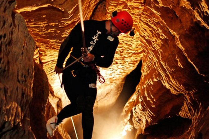 Waitomo Caves Adventure from Auckland or Rotorua