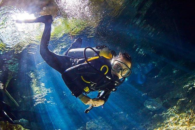 playa del carmen cenotes scuba diving
