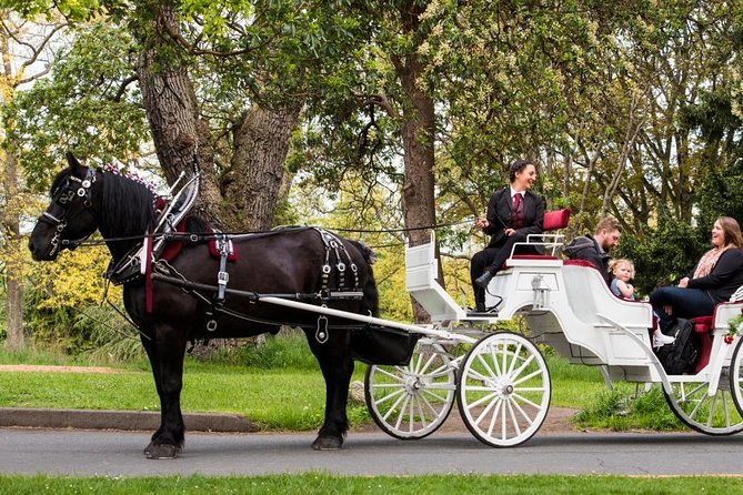 45-Minute Beacon Hill Park Horse-Drawn Carriage Tour photo 1