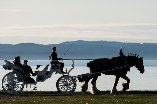 Grand Horse-Drawn Carriage Tour