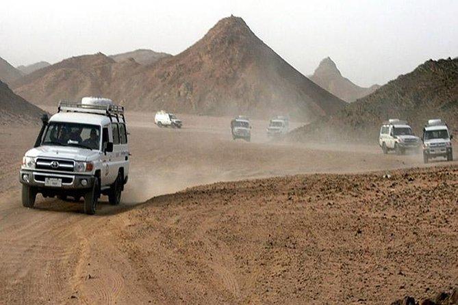 Camel and Beach Buggy Desert Safari in Hurghada