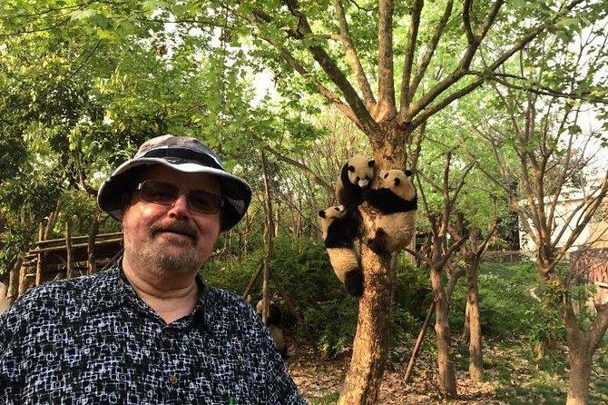 Chengdu Private Day Tour: Giant Panda Base and Qingcheng Mountain