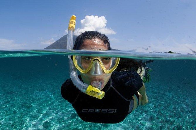 Waitukubuli Volcano Snorkeling