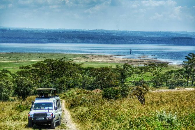Full-Day Lake Nakuru National Park Private Tour from Nairobi