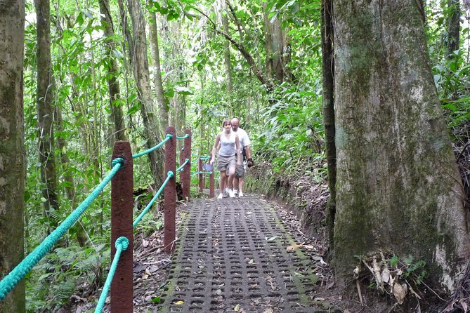 Combo Tour with Hanging Bridge,Waterfall,Volcano Hike and Tabacon Hot Springs photo 3