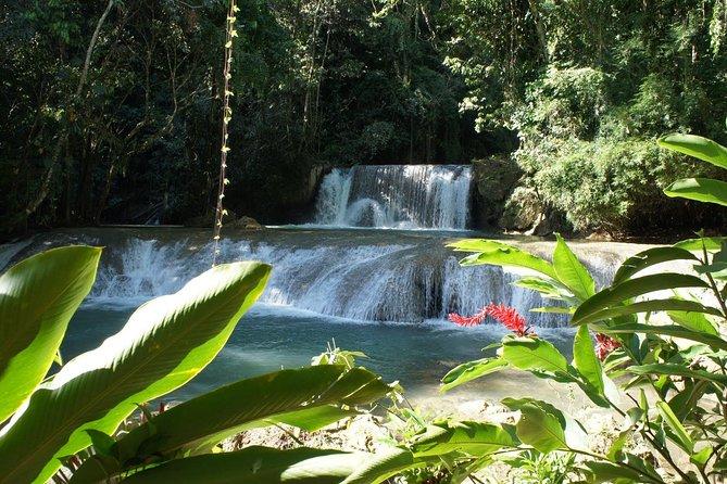 Tour privado de YS Falls desde Montego Bay
