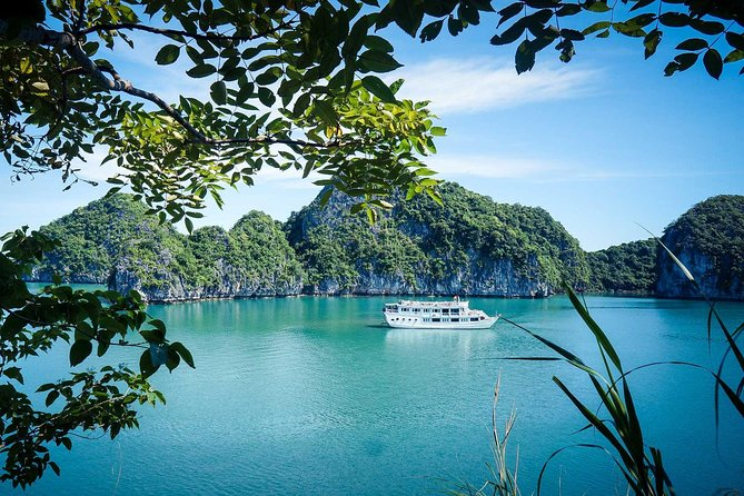 Standard Halong 2 days 1 night - overnight on cruise - Bai Tu Long routine photo 8