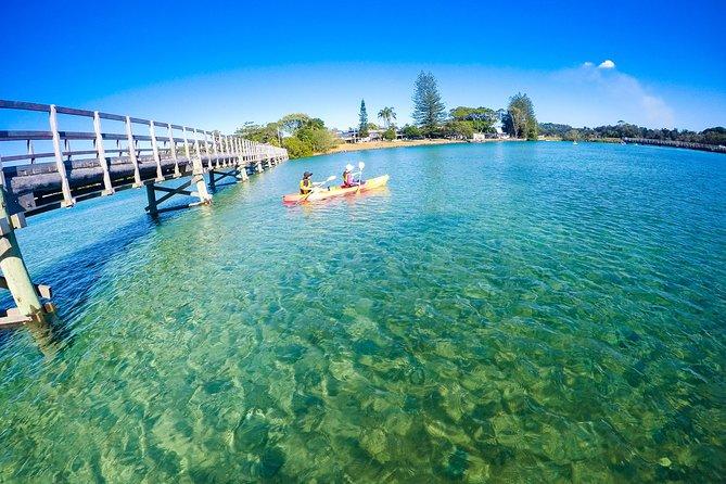 Excursion en kayak nature de Brunswick River depuis Byron Bay