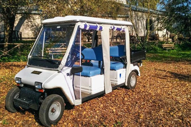 Private Appian Way (Appia Antica) Tour in Rome by Golf Cart