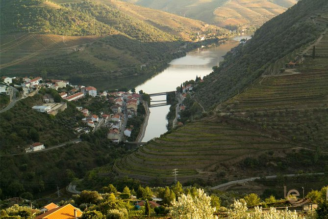 Private Full-Day Douro Valley Tour Including Wine Tasting photo 1