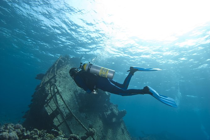 South Aruba 2-Tank Dive Experience