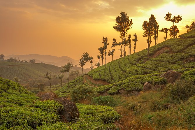 Kerala in 05 Days