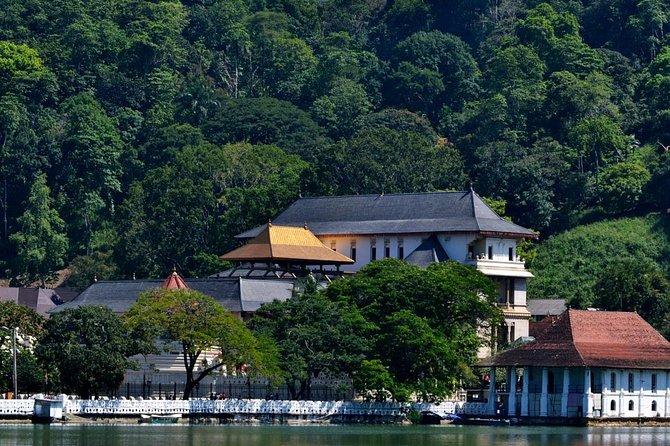 Kandy City Tour from Bentota (Private Day Tour)