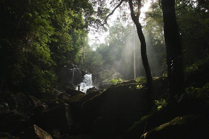 Rainforest Explorer from Bentota (2 Days)