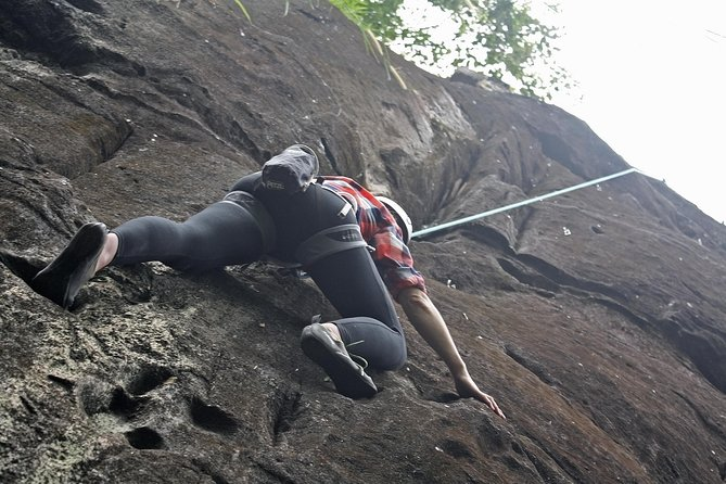 Forest Rock Climbing from Horana