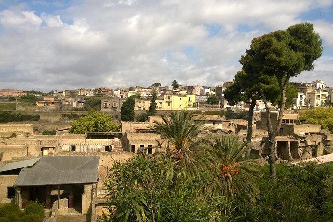 Herculaneum's Stunning Tour