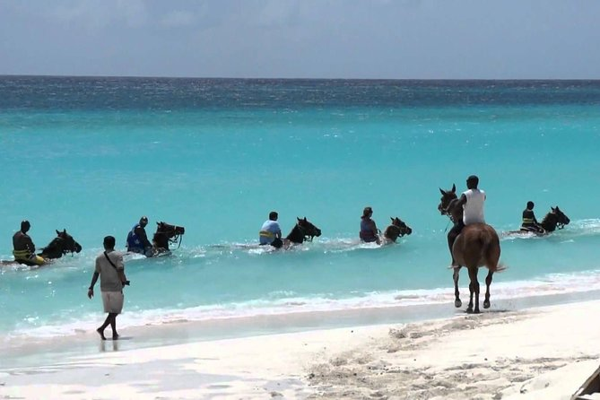 Secret Falls, Blue Hole, and Horseback Riding from Ocho Rios