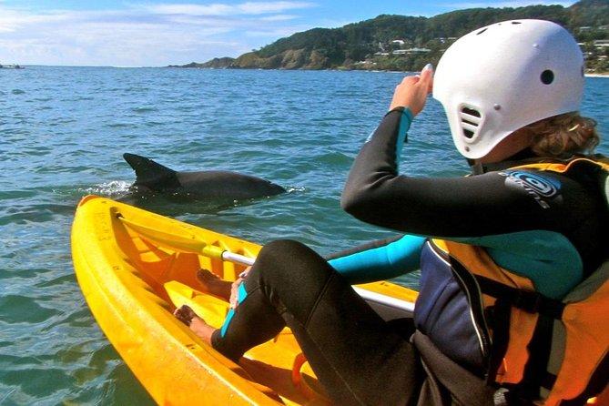Byron Bay combiné: excursion arrière-pays, y compris les chutes Minyon et kayak avec les dauphins